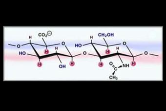 hijaluronska kiselina 01